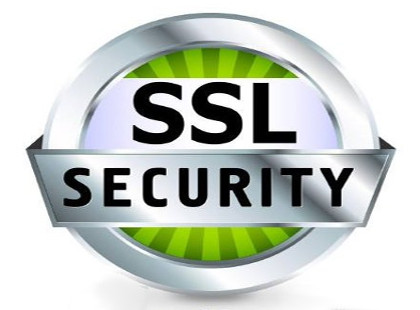 SSL Certificate is the quickest and most cost effective way for an online business to protect customer transactions.